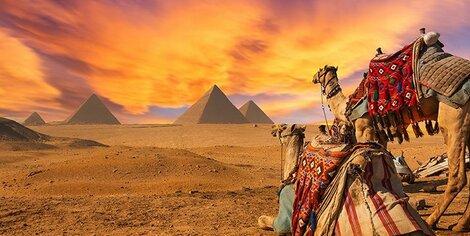 Egitto - Tour con Archeologo!